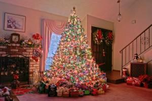 Decorated Christmas Tree 9