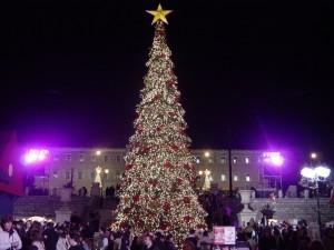 Big Christmas tree Outdoor decoration 2014