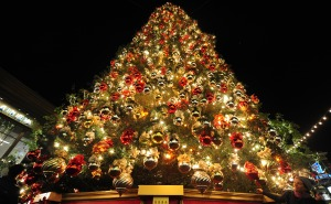 Out door Christmas tree decoration for display 2014