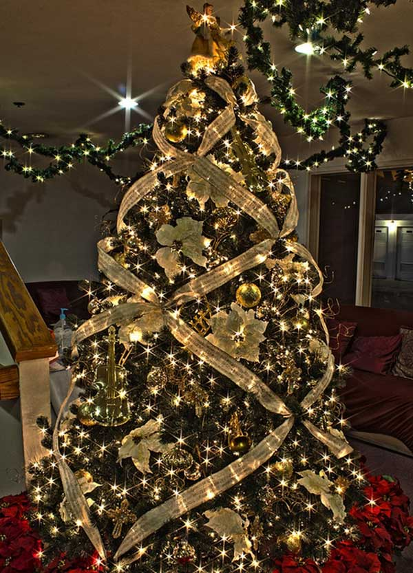 Christmas Tree Collection Gravesend : Christmas tree s collection for